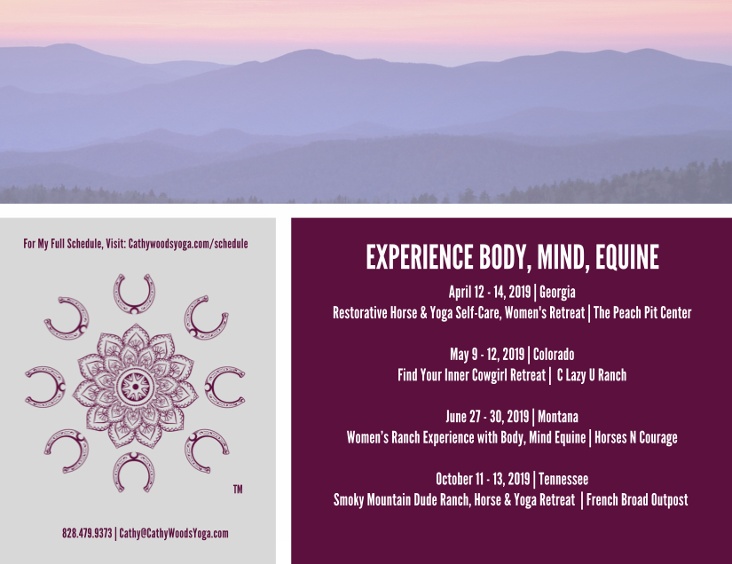 2019 Events for Body, Mind, Equine